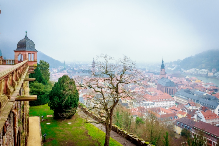 You can have a panoramic view of Heidelberg's aldstadt (Old town) from the Heidelberg Schloss.