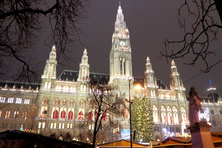 Vienna Rathaus (City hall), was well illuminated and festive with a large Christmas market in its grounds.