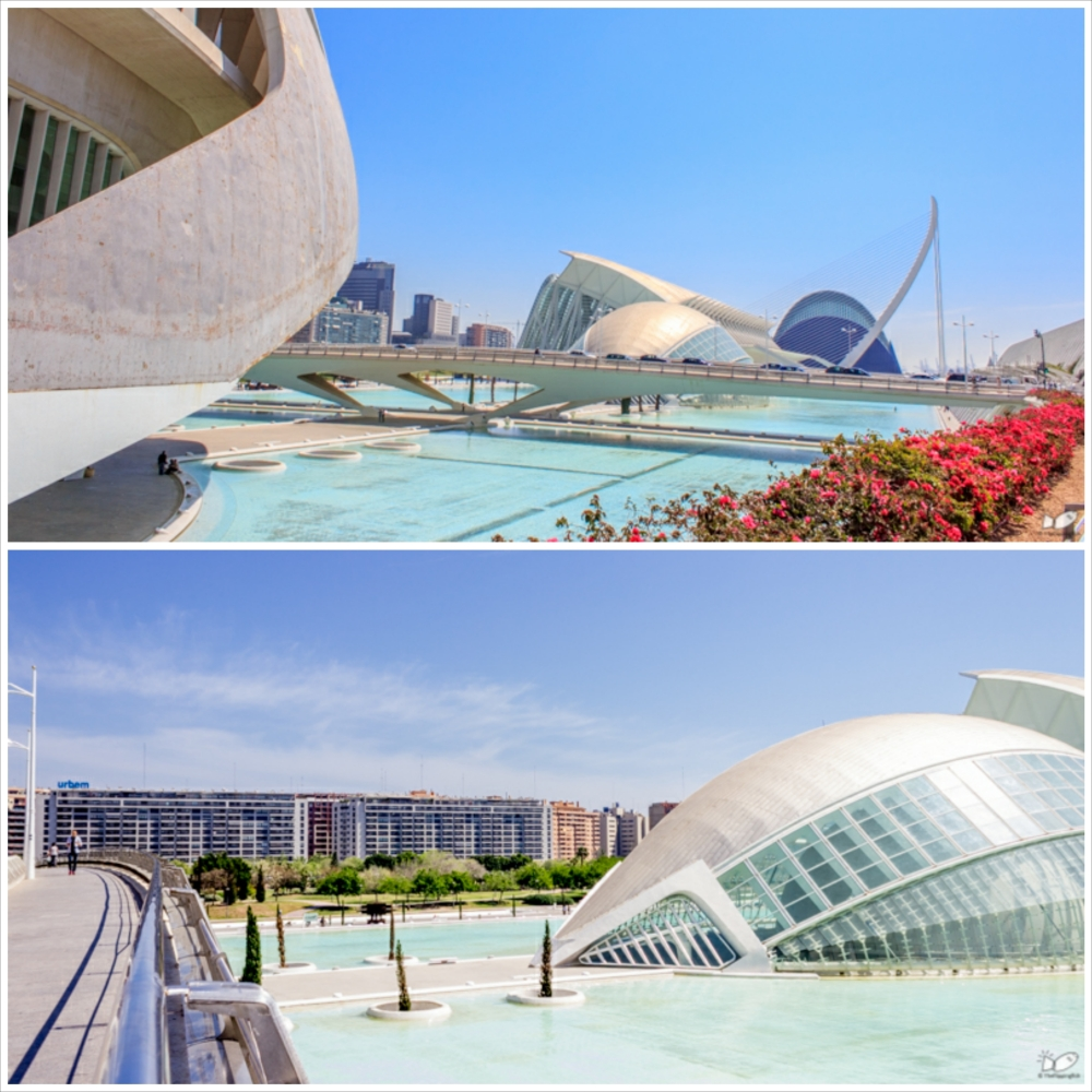 "The Ciudad de las artes y las Ciencias is a collection of futuristic buildings. I particularly like the L'Hemisferic (middle building in above picture). The L'Hemisferic (below) as the description say, resembles an ""eye"" that signifies ""the eye of knowledge"". fair enough, this structure houses the IMAX theater, a big Planetarium and laserium."