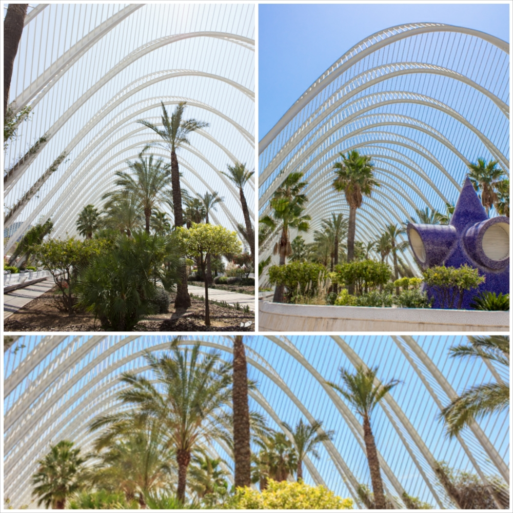 The L'Umbracle is a giant greenhouse encasing a landscaped garden consisting of local species of flowers, plants and trees.