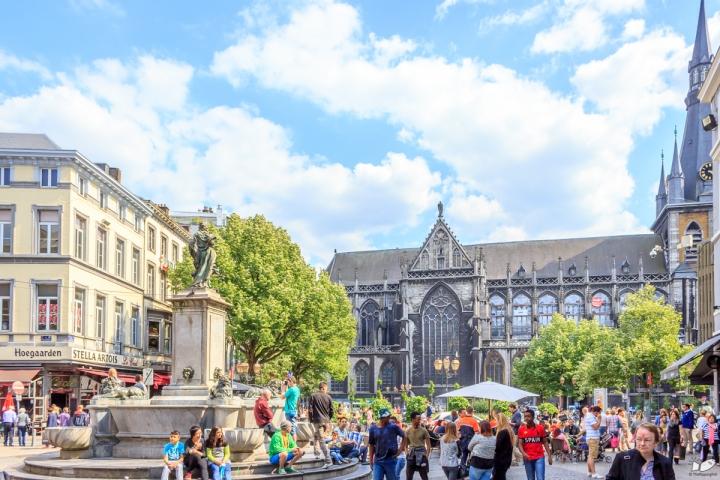 La Place de la Cathedrale, Liege
