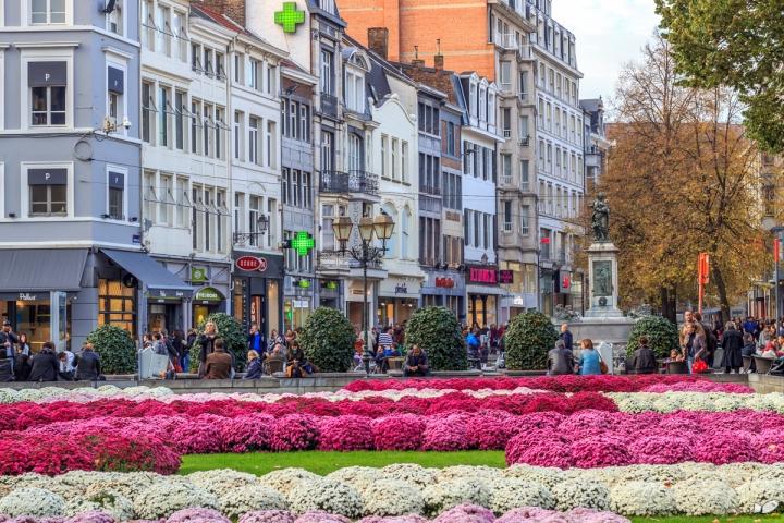 carpet of flowers at the Place de la Cathedrale
